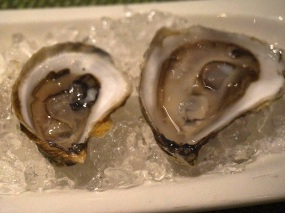 Sea Change: Oysters