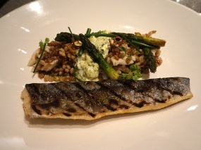 Sea Change: Trout