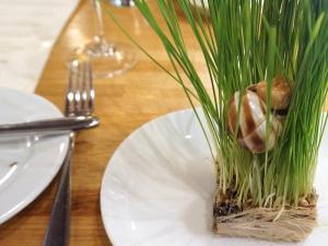 Piccolo: Escargot