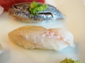 Unobjectionable tai/red snapper.