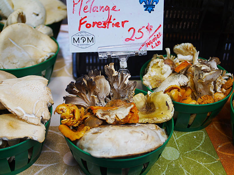 Jean-Talon: Mushrooms