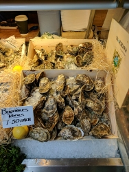 Borough Market: Oysters