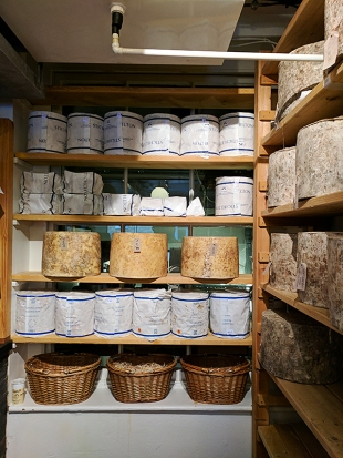 Neal's Yard Dairy, Covent Garden: Stichelton