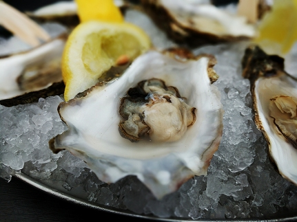 The Oyster Shed: Oyster
