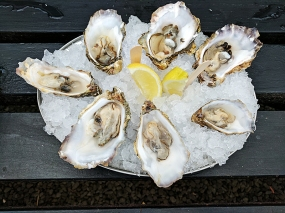 The Oyster Shed: Oysters