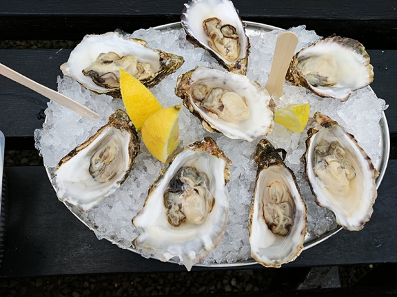 The Oyster Shed: More oysters