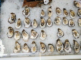 The Oyster Shed: Shucked