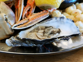 The Claymore: Oyster