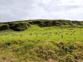 Kilchoman: Hills and sheep