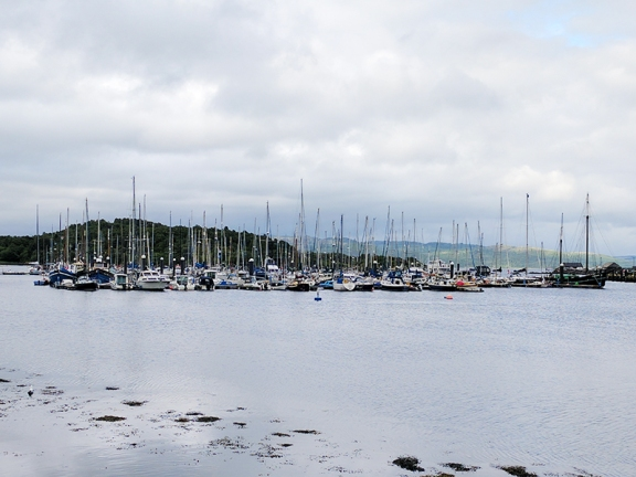 Tarbert: More boats