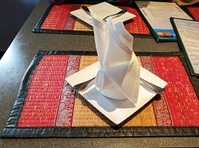 The boys were very taken by the napkin arrangement and I promised I'd put a picture of one in my review.