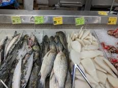 Shuang Hur: Mackerel, catfish, striped bass, squid tubes