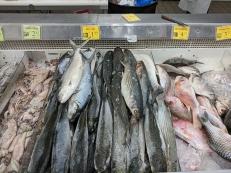 Shuang Hur: Milkfish