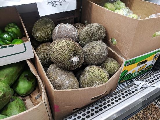 TBS Mart: Breadfruit