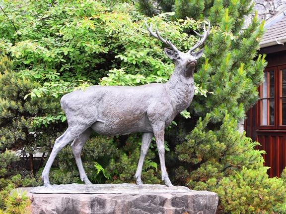 Glenfiddich: Stag