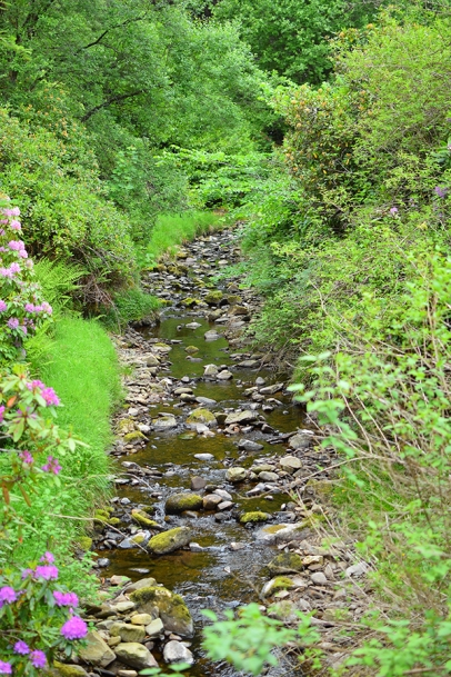 Glen Grant: The stream passes through the garden