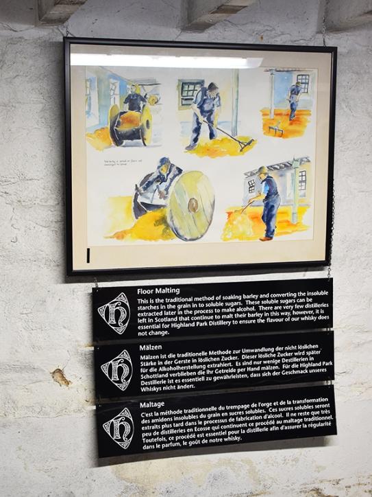 Highland Park: Floor malting diagram