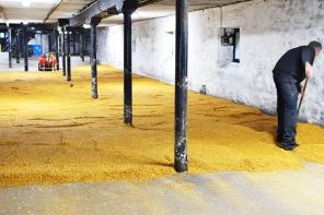 Highland Park: Malting floor