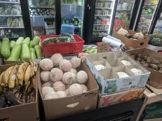 Viet Hoa Lao Market: Coconuts etc