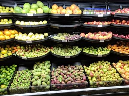 Holy Land: Fruit