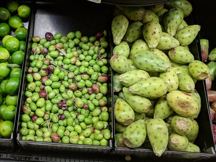 Holy Land: Green olives and prickly pears