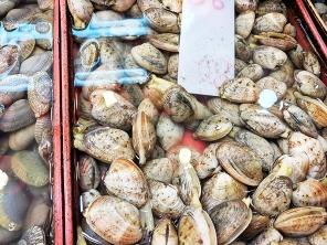 Sai Ying Pun Market, Clams