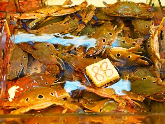 Sai Ying Pun Market, Crabs2