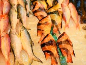 Sai Ying Pun Market, Whole fish3