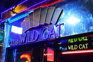 Club Wild Cat
