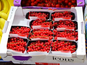 Hong Kong Fruit and Veg: Currants?