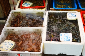Hong Kong, 2018: Yet more shellfish