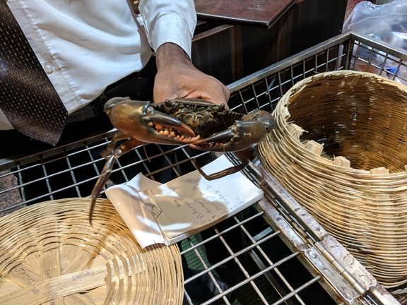 Jai Hind: Crab