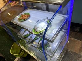 Jai Hind: Fish