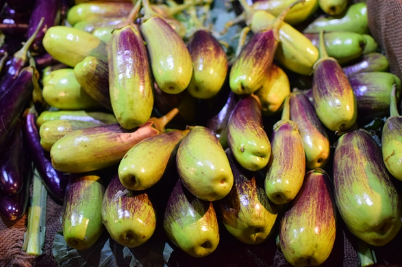 I don't think these green eggplants have ever been cooked in our house.