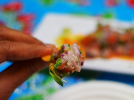 Holbox, Ceviche bite