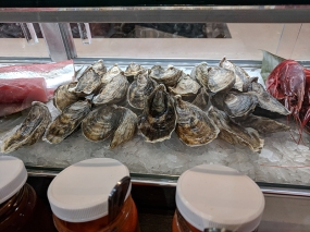 Holbox, Oysters