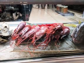 Holbox, Shrimp