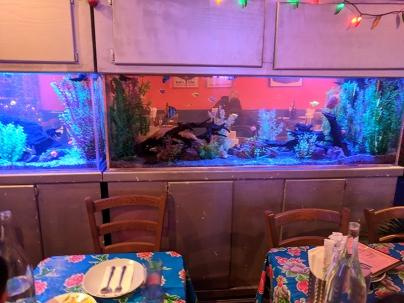 Sahm, Aquarium