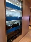 Lunasia, Live seafood tanks