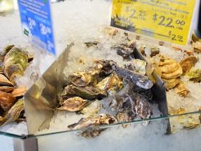 La Boite Aux Huitres, More oysters