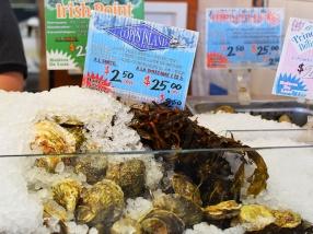 La Boite Aux Huitres, Oysters