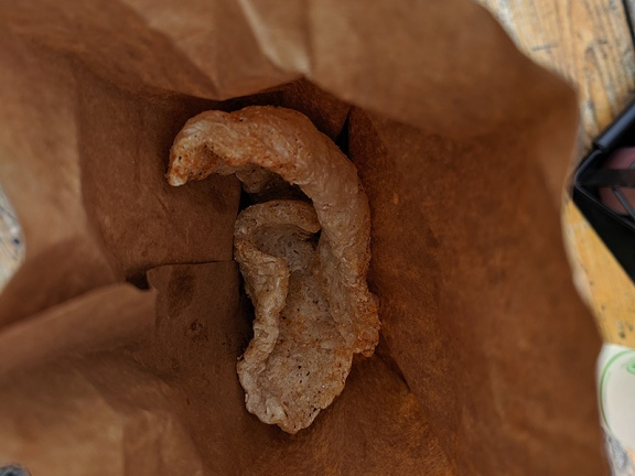 A little bag of pork rinds came out with the water.