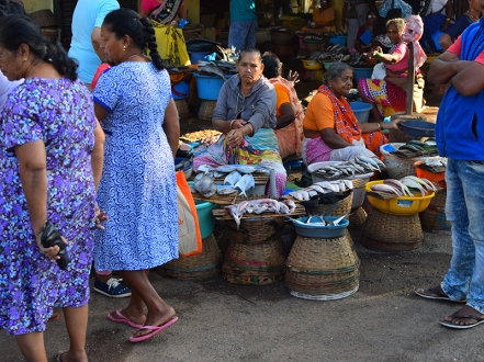 1. Assolna Market, Approaching the fish sellers