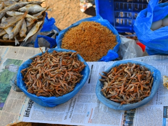 38. Assolna Market, Dried shrimp