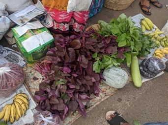 40. Assolna Market, Red bhaji
