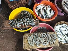 8. Assolna Market, Shrimp, mussels