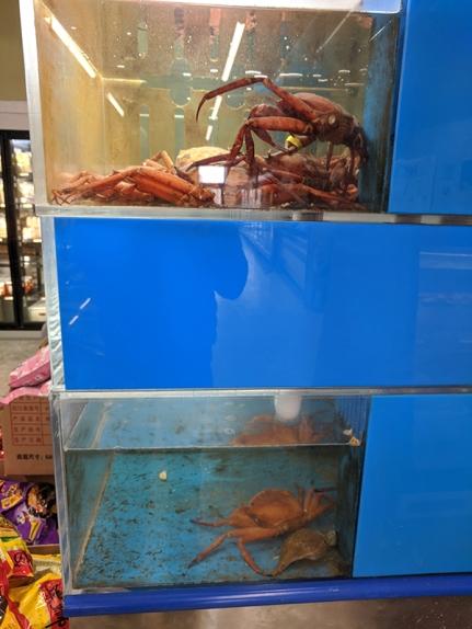 Rong Market, More Crab