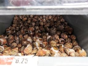 Rong Market, Snails