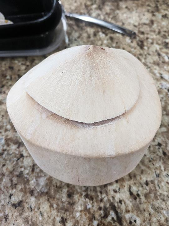 Peninsula, Coconut