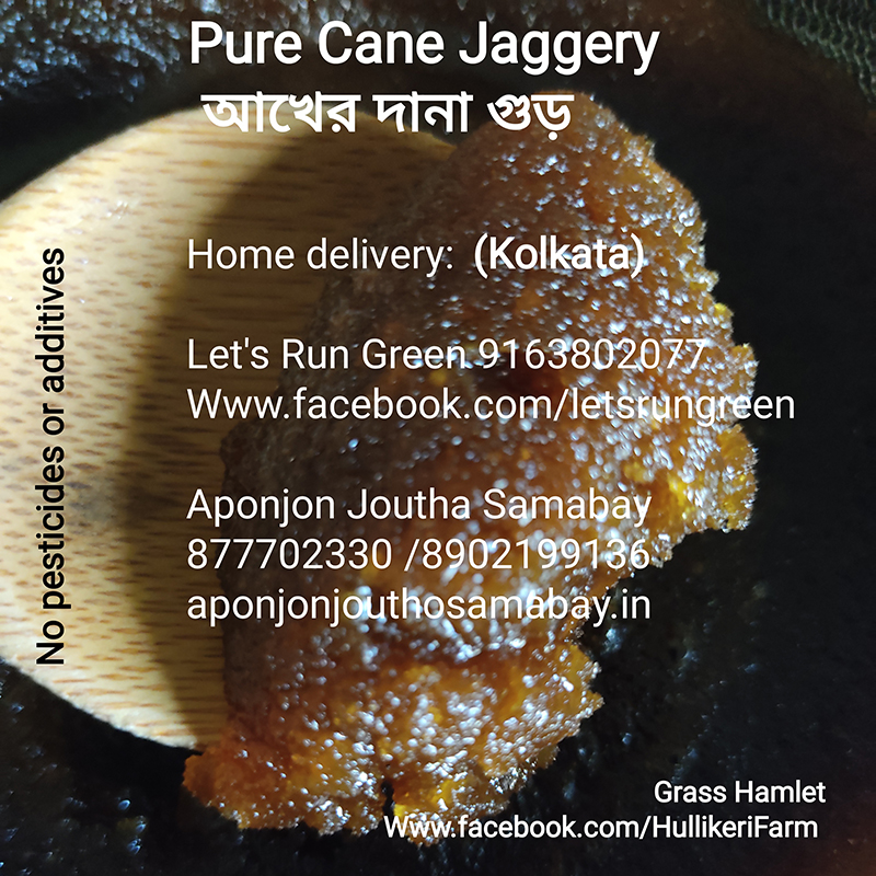 We sell locally from the farm itself, and in Kolkata. If you are in Kolkata and are interested in trying some of our jaggery, here is where you can order it